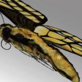 アゲハ蝶の3Dモデル